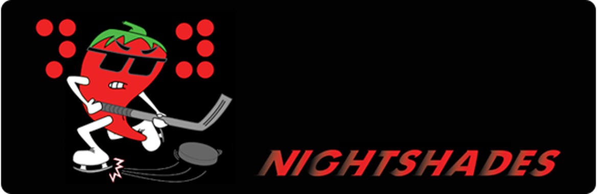 Nightshades Blind Hockey