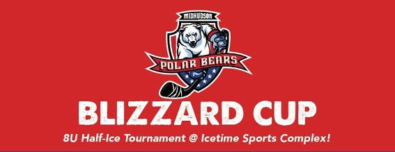 Blizzard Cup 2020